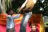 15 Die Räubershow für Kinder mit nostalgischer Akrobatik zur Gründerzeit. Der Wachtmeister und die Räuber zaubern mit Feuerjonglage ein großartiges Kinderprogramm...